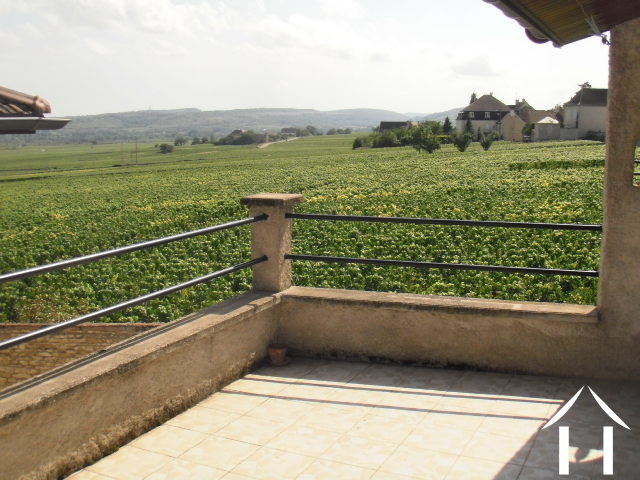 Overlooking the vineyards with cellar